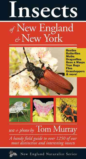 Insects of New England & New York By Murray, Tom